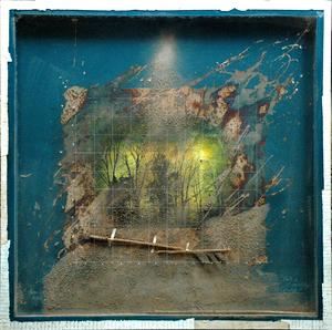 Daniel Gerhardt recent art