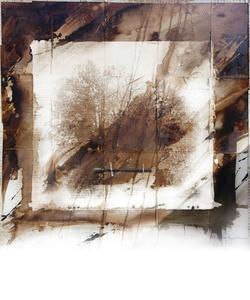 Foret de Madelaine by Daniel Gerhardt